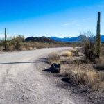 Driving from San Diego to Tucson – Road Trip Adventures