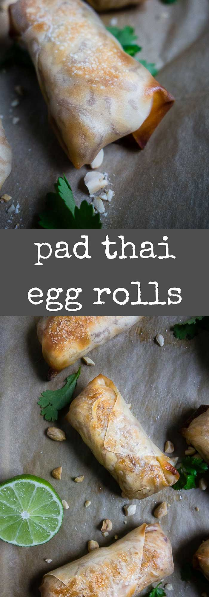 These pad thai baked egg rolls are stuffed with flavor packed chicken pad thai, baked until golden brown and crispy and served with a spicy peanut dipping sauce.spring rolls | homemade pad thai | chicken egg rolls | thai egg rolls | baked egg rolls | best thai appetizers | chicken pad thai egg rolls | crispy egg rolls | easy egg roll recipe | thai peanut sauce